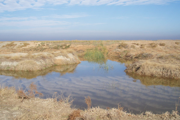 Studies for Bed and fringe delineation for Bamdej wetland in Khoozestan