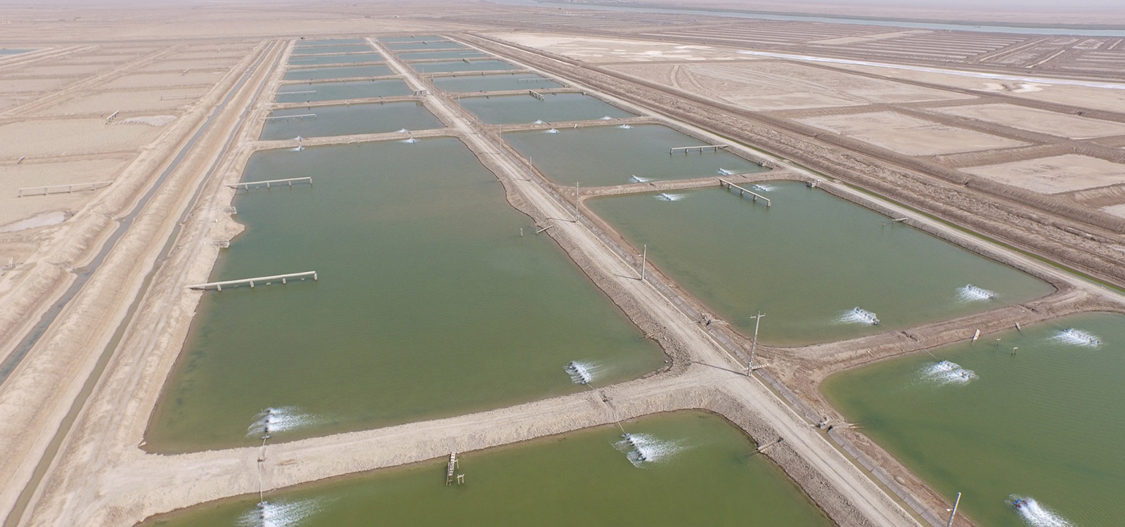 Study, Design, and supervision of 5000 ha Choebdeh shrimp breeding complex